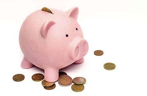 money-pig2