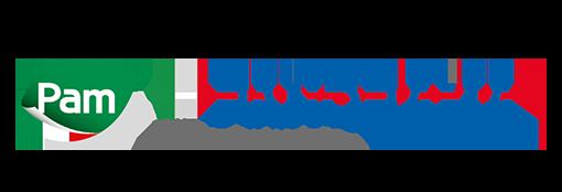logo-PamPanorama